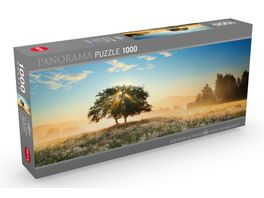 Heye Panoramapuzzle 1000 Teile Alexander von Humboldt Play of Light