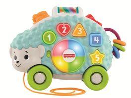 Fisher Price BlinkiLinkis Igel Baby Spielzeug Lernspielzeug Nachziehtier