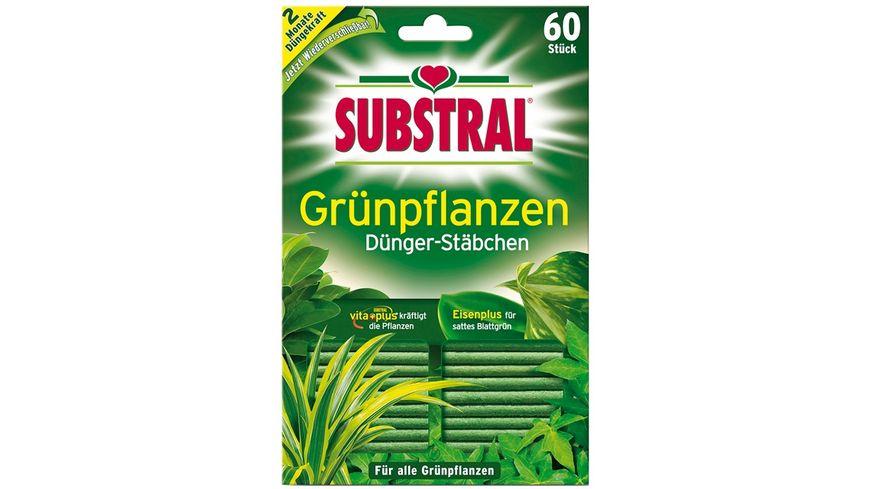SUBSTRAL Gruenpflanzen Duenger Staebchen