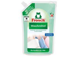 Frosch fluessig Universal Waschmittel