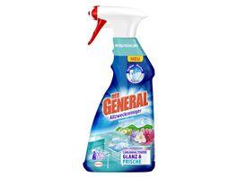 DER GENERAL Allzweckreiniger Spray Bergfruehling