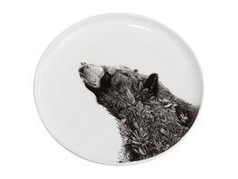 MAXWELL WILLIAMS Teller MF 20 Asiatic Black Bear