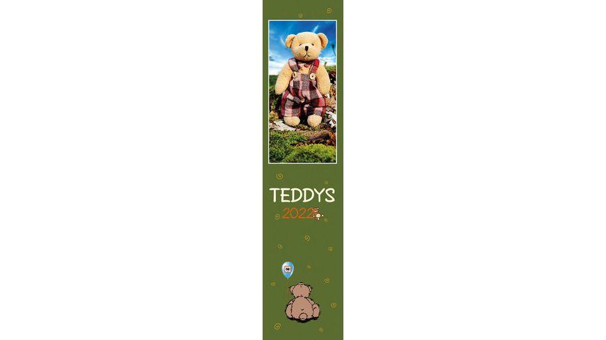 Mueller Streifenplaner Teddy 2020