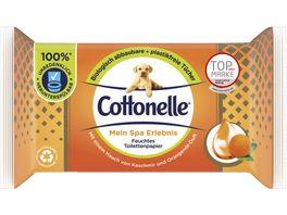Cottonelle Feucht Toilettenpapier Mein Spa Erlebnis Orange Nachfueller