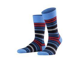 FALKE Tinted Stripe Socke