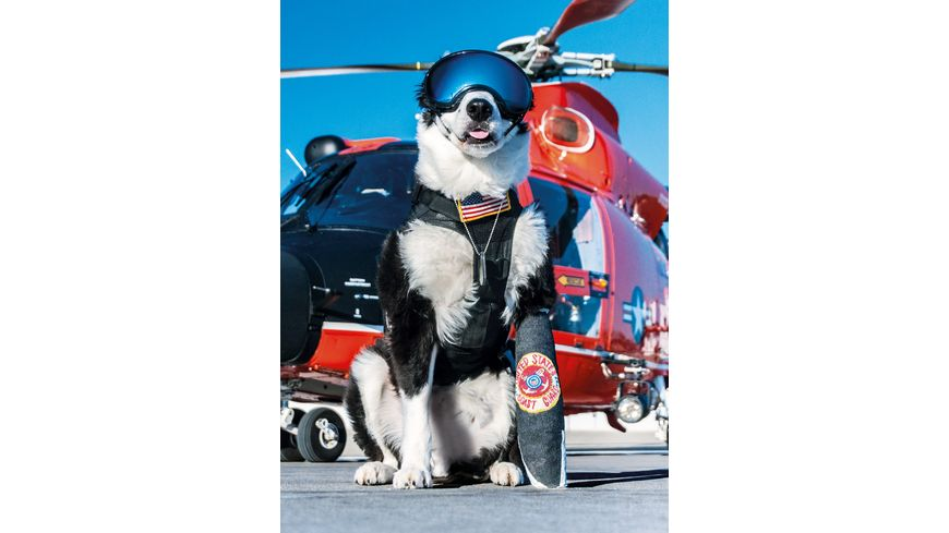 Clementoni Galileo Airport Dog 1000 teile High Quality Collection