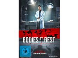 Bodies at Rest