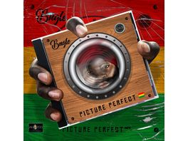 Picture Perfect 2CD Set Digipak