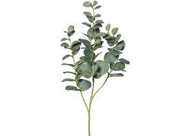 Eukalyptuszweige 92 cm