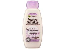 GARNIER Wahre Schaetze Seidiges Pflege Shampoo Wintertraum