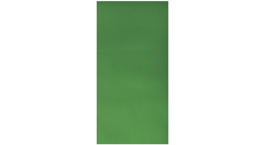 Rayher WACHSFOLIE GRUEN 20 X 10 CM 2 STUECK 3103729