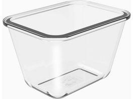 rotho Pagamalu Behaelter aus Glas 0 75l