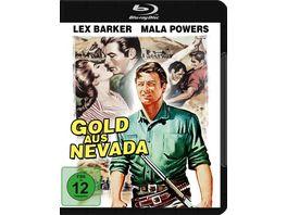 Gold aus Nevada Yellow Mountain