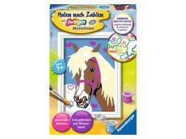 Ravensburger Beschaeftigung Malen nach Zahlen Liebes Pferd