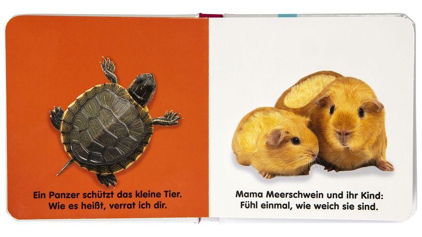 Mein Fuehlbilderbuch Haustiere Wattiertes Pappbilderbuch ab 6 Monaten