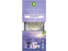 Air Wick Duftblume Erfrischende Wasserorchidee Schwertlilie