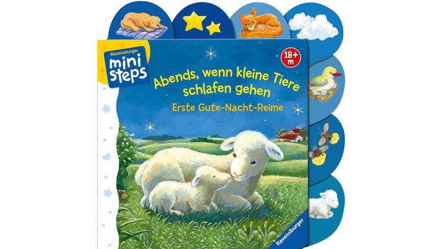 ministeps Buecher Abends wenn kleine Tiere schlafen gehen Ab 18 Monaten