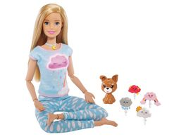 Mattel Barbie Wellness Meditations Puppe blond und Spielset