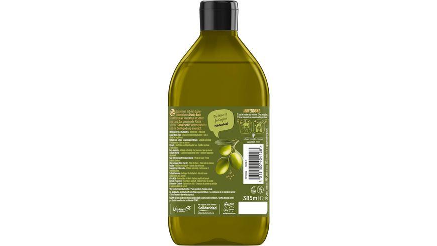 NATURE BOX Shampoo Oliven Oel