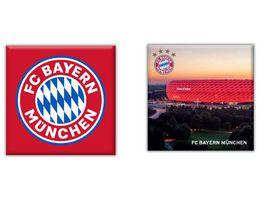 FC BAYERN MUeNCHEN SMU Magnet 2er Set Arena