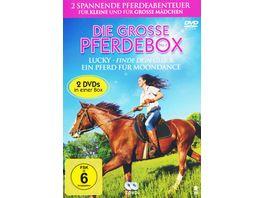 Die grosse Pferde Box No 1 2 DVDs