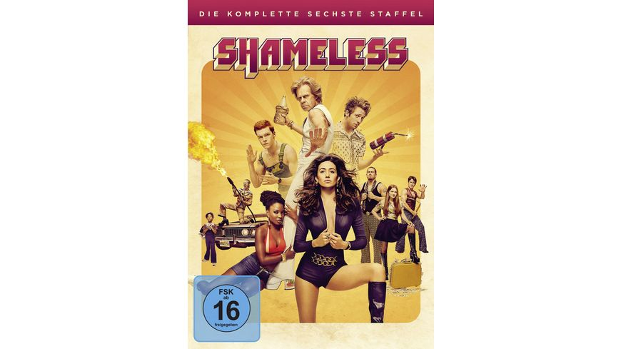 Shameless - Staffel 6  [3 DVDs]