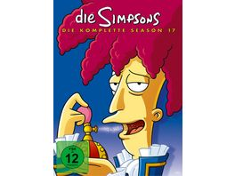 Die Simpsons Season 17 CE 4 DVDs