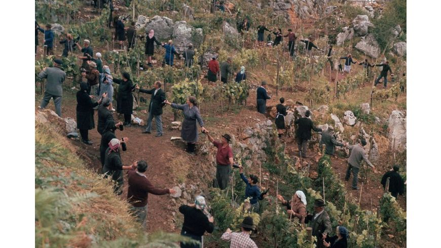 Das Geheimnis von Santa Vittoria Extended Kinofassung HD neu abgetastet