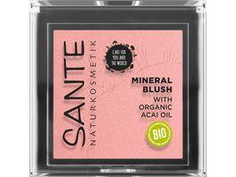 SANTE Mineral Blush