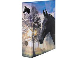 Ordner A4 8cm Pferde sortiert