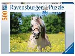 Ravensburger Puzzle Pferd im Rapsfeld 500 Teile