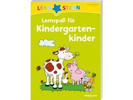 LERNSTERN Lernspass fuer Kindergartenkinder Raetseln spielen lernen