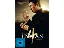 Ip Man 4 The Finale