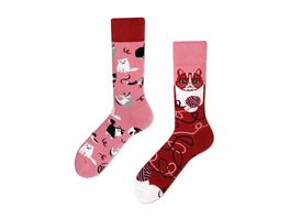 MANY MORNINGS Unisex Socken Playful Cat Regular 1 Paar