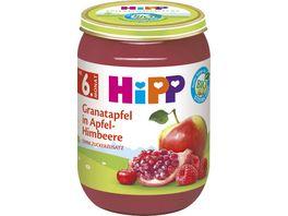 HiPP BIO Fruechte Granatapfel in Apfel Himbeere ohne Zuckerzusatz 190g