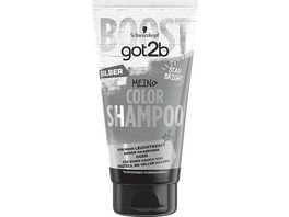 SCHWARZKOPF GOT2B Color Shampoo Silber