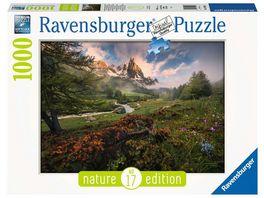 Ravensburger Puzzle Malerische Stimmung im Vallee de la Claree Franzoesischen Alpen 1000 Teile