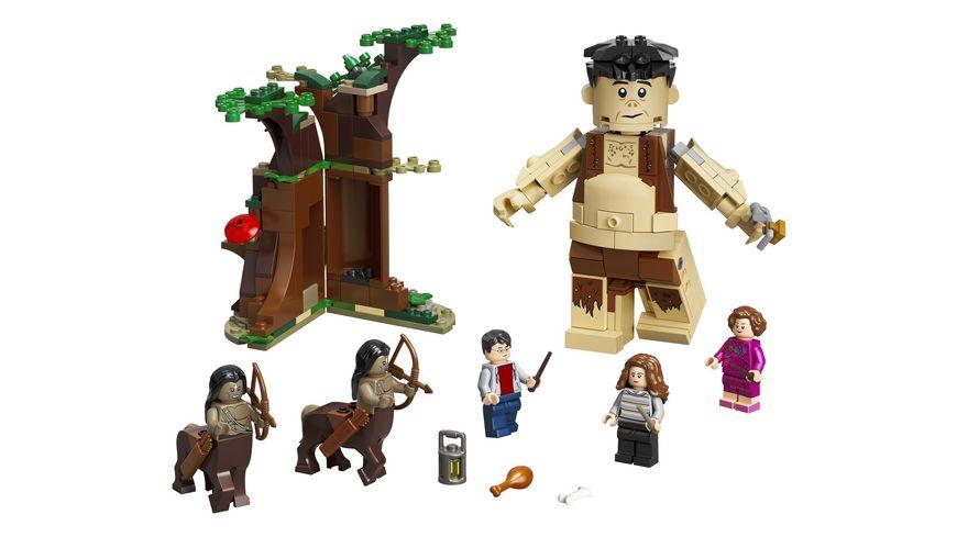 LEGO Harry Potter 75967 Der Verbotene Wald Begegnung mit Umbridge