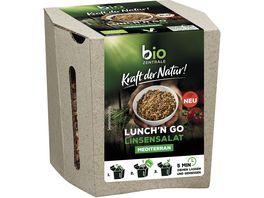 biozentrale Kraft der Natur Lunch n Go Linsensalat