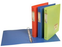 EXACOMPTA Ringbuch A4 Recycling PP schmal forever sortiert
