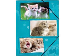 Gummizugmappe A4 Katze