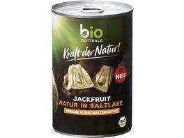 biozentrale Kraft der Natur Jackfruit Natur