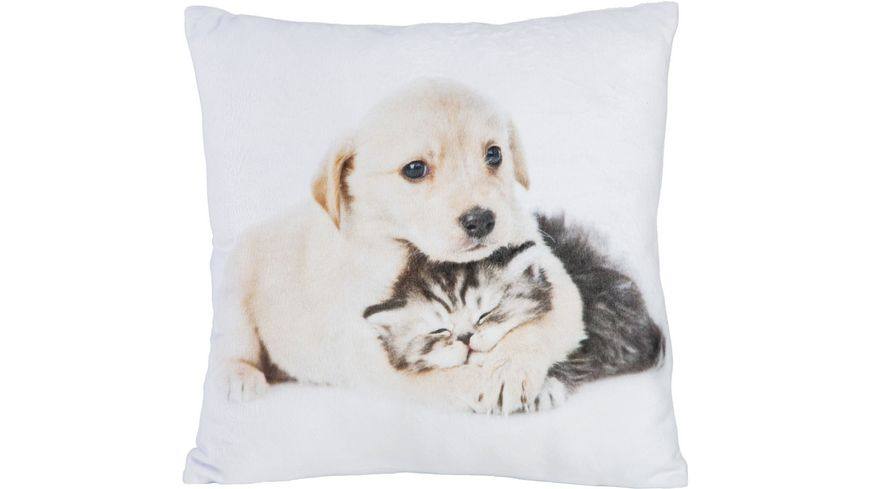 Stuco Fotodruck Dekokissen Design Katze/Hund