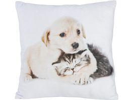 Stuco Fotodruck Dekokissen Design Katze Hund