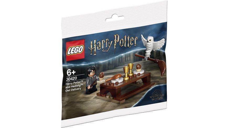 LEGO Harry Potter 30420 Harry Potter und Hedwig Eulenlieferung