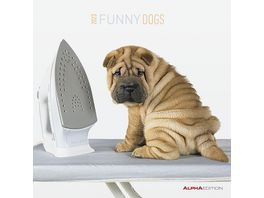 Funny Dogs 2021 A I 30x31cm