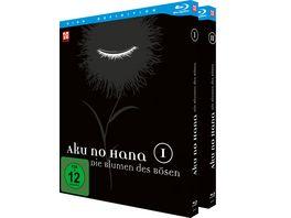 Aku no Hana Gesamtausgabe Blu ray Box 2 BRs