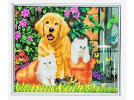 Craft Buddy Crystal Art Picture Frame Kit Katze und Hund 21 cm x 25 cm
