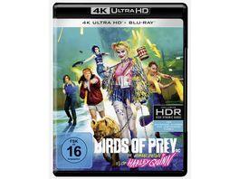 Birds of Prey The Emancipation of Harley Quinn 4K Ultra HD Blu ray 2D