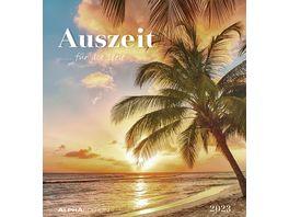 Alpha Edition Postkartenkalender Katzen 2021 16x17cm
